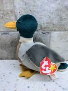 Ty Beanie Baby Andldquojakeandrdquo Duck With 1998 Tush Tag And Errors-excellent Conditionandnbsp