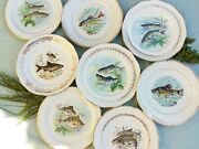 Eight Mix And Match Fish Plates. French Limoges Porcelain Fish Dinnerware Set.