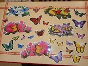 Rare Greg Giordano 25 Butterfly Magnet Set Great