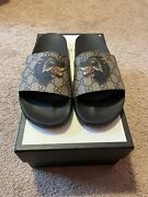 Nwt Supreme Gg Wolf Slides Size Us 9 Authentic