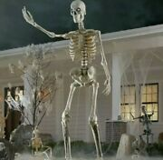 12 Ft Giant Skeleton W/ Animated Lcd Eyes Halloween Prop Homedepot Sold Out