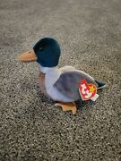 Jake The Mallard Ty Beanie Baby. Tag Errors And Tush Tag Inside Stamp