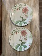 2 Lenox Winter Garden Winter Rose With Chinaberrys Dinner Plates