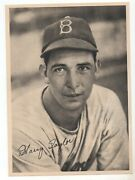1947 Lot Of 9 Brooklyn Dodgers Source B/w Team Photo Pack All Different Look