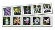 Wild Orchids Usps Forever Stamps Strip Of 100 First Class Postage Roll Dispenser