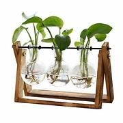 Plant Terrarium With Wooden Stand Air Planter Bulb Glass Vase Swivel Holder