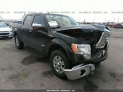 Passenger Front Door Electric Fits 09-14 Ford F150 Pickup 2458871