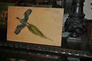 Listed Bruno Ertz 1873 - 1956 Painted Wood Sculpture Of Ring Necked Pheasant