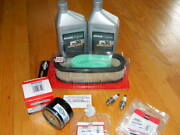 Briggs And Stratton Opposed Twin Tuneup Kit Filters, Plugs,oil / Garden Tractor