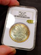 1885-o Ngc Ms65 Gold Cac 2 Sided Monster Rainbow Toned Morgan Old Fatty Holder