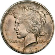 1921 High Relief Silver Peace Dollar Pcgs Ms64 Cac Wow Key Date Trueview