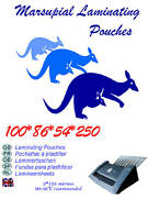 Laminating Pouches 100 Id Credit Card Size Fits Most Laminator 5486mm 250micron