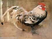 A Rooster Adult Male Chicken Cock Bird Painting By Joseph Crawhall Repro