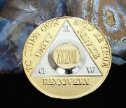 Alcoholics Anonymous Gold Silver Plated 37 Year How Old Style Medallion Coin