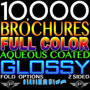 10000 Brochures 9x16 Full Color Personalized Double Sided 100lb Glossy Folded