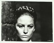 Claudia Cardinale In The Pink Panther Original Vintage Photo 1965 Portrait