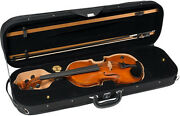 Barcus Berry,bb100-el Acoustic Electric Violin In Natural Hand Rubbed Finish,new