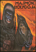 Planet Of The Apes 1968 Original Rare Must See Hungarian Poster Film Art Gallery