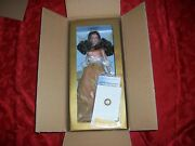 2010 Franklin Mint Annual Christmas Angel Of Hope