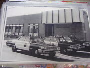 1964 Ford Police Cars New On Display 11 X 17 Photo / Picture