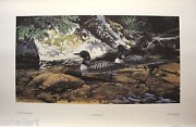 Janene Grende Clearwater Loons Limited Edition Print Coa Art Mint Condition