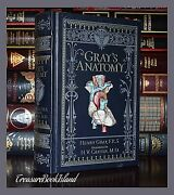 Grayand039s Anatomy By Henry Gray Brand New Leather Bound Collectible Gift