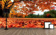 Huge 3d Park Autumn Leaves Wall Paper Wall Print Decal Wall Deco Indoor Wall