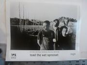 Vintage Glossy Press Photo Toad The Wet Sprocket On Farm 1991