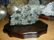 Crystal And Crystal Pyrite With Galena Large Gorgeous Special Specimen {unique}