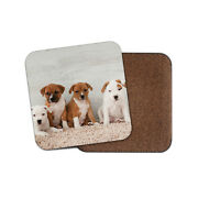 Cute Staffy Puppies Drinks Coaster - Dog Puppy Pit Bull Terrier Fun Gift 8638