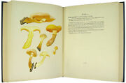 William Gilson Farlow Icones Farlowianae Illustrations Of The Larger Fungi 1929