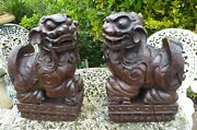 Pair Of Chinese Hardwood Fu Temple Lions 1830 Superb Free Shipping To England