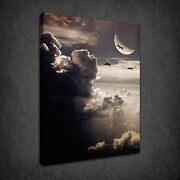 Moonlight Birds Cloudy Sky Dramatic Box Canvas Print Wall Art Picture