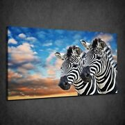 Zebra Couple Stormy Cloudy Sky Sunset Box Canvas Print Wall Art Picture
