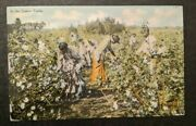 1911 Black Americana In The Cotton Fields Augusta Ga To Syracuse Ny Rppc Cover