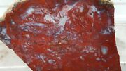Beautiful Red Moss Flame Agate Rough Block Cab Carve 22 Pounds Old Stock