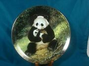Panda Mother Baby Endangered Species W.s. George Plate By Will Nelson 1988