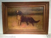Antique 19th Century Italian St.bernard Dog Signed And039a.mollicaand039 Oil Painting