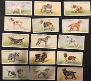 15 Card Lot Dogs Cigarette Cards Wd And Ho Wills Tea Dog Antique Art For Framing