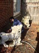 Pair Of Large Antique Chinese White Marble Kirin Or Dragon Horses ...foo Dogs