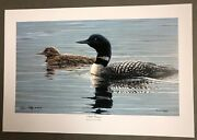 Darren Haley Limited Edition Art Print Loon And Baby Chick Still Waters Ap