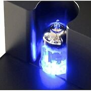 Carrot One Vacuum Tube Pre-main Headphone Amplifier [limited Production Of 120