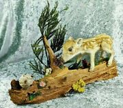 Br14 Taxidermy Baby Javelina Pig And Bees On Wood Oddities Curiosities Specimen