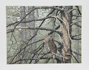 Chris Forrest, Great Horned Owl, Lithograph, Signed And Numbered In Pencil
