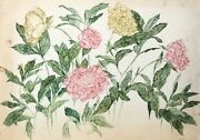 Carl Bergman Pink And Yellow Chrysanthemums Watercolor On Arches