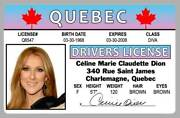 Celine Dion 001 Quebec Canada Novelty Drivers License Id Card