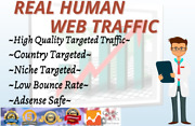 Targeted Organic And Social Web Traffic For 30 Days
