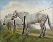Unknown Artist Horses At The Fence Oil On Canvas Signed And039e. Moleveleand039 L.l