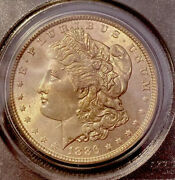 1886-p Morgan Dollar Ms65 Old Green Holder Ogh Graded By Pcgs Beautiful