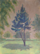 Laurent Marcel Salinas Tree With Shadow Oil On Paper Signed L.r.